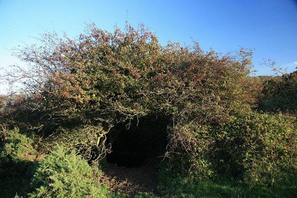 Hob hole, hobbit hole a Runswick Bay
