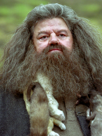 Rubeus Hagrid Messaggero