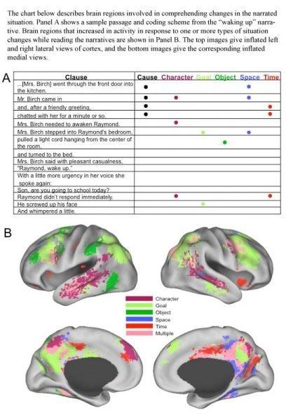 neuroscienze e narrativa